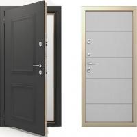Входная термо дверь Termo